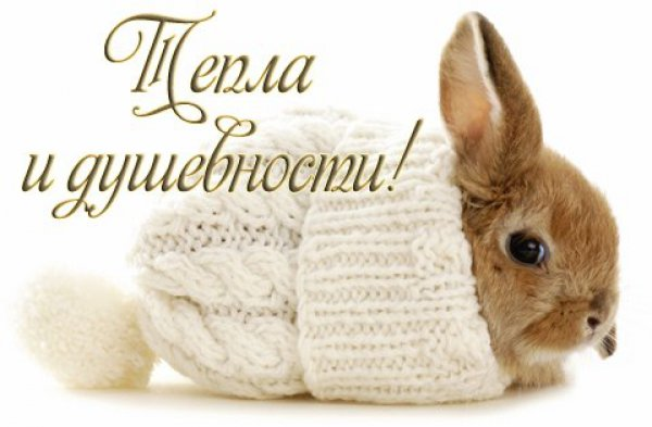 http://remont.orsk.ru/images/afisha/usercontest/con_42_1367251359_3290.jpg